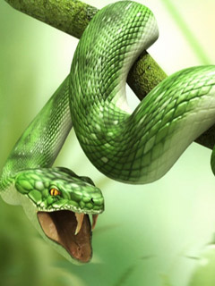 Green serpent