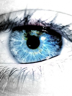 Brightly blue eye
