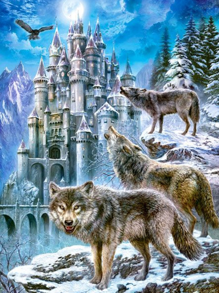 Wolves by the castle