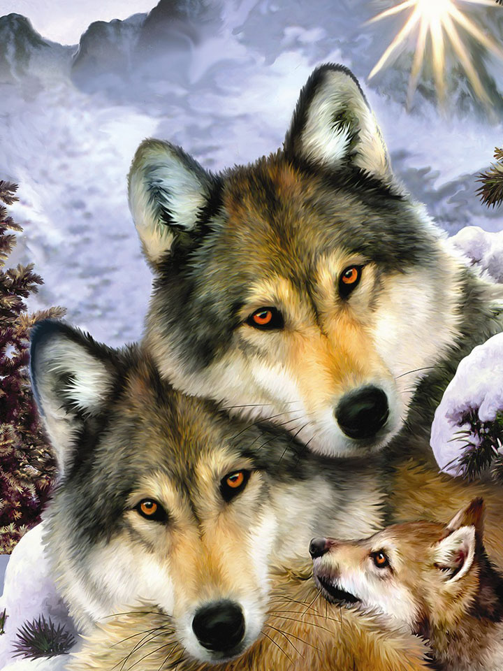 Family of wolves