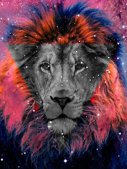 каждой лев в треугольнике картинки этого нам