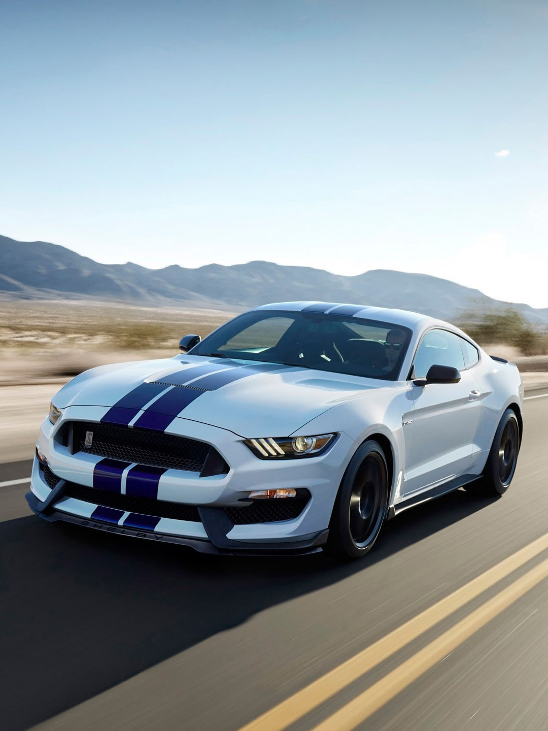 Ford Shelby на дороге