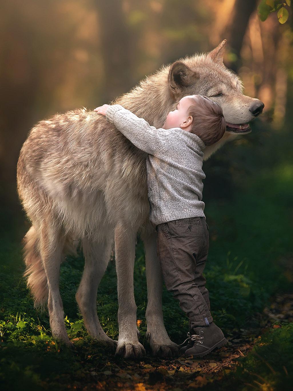 Картинки человека и волка