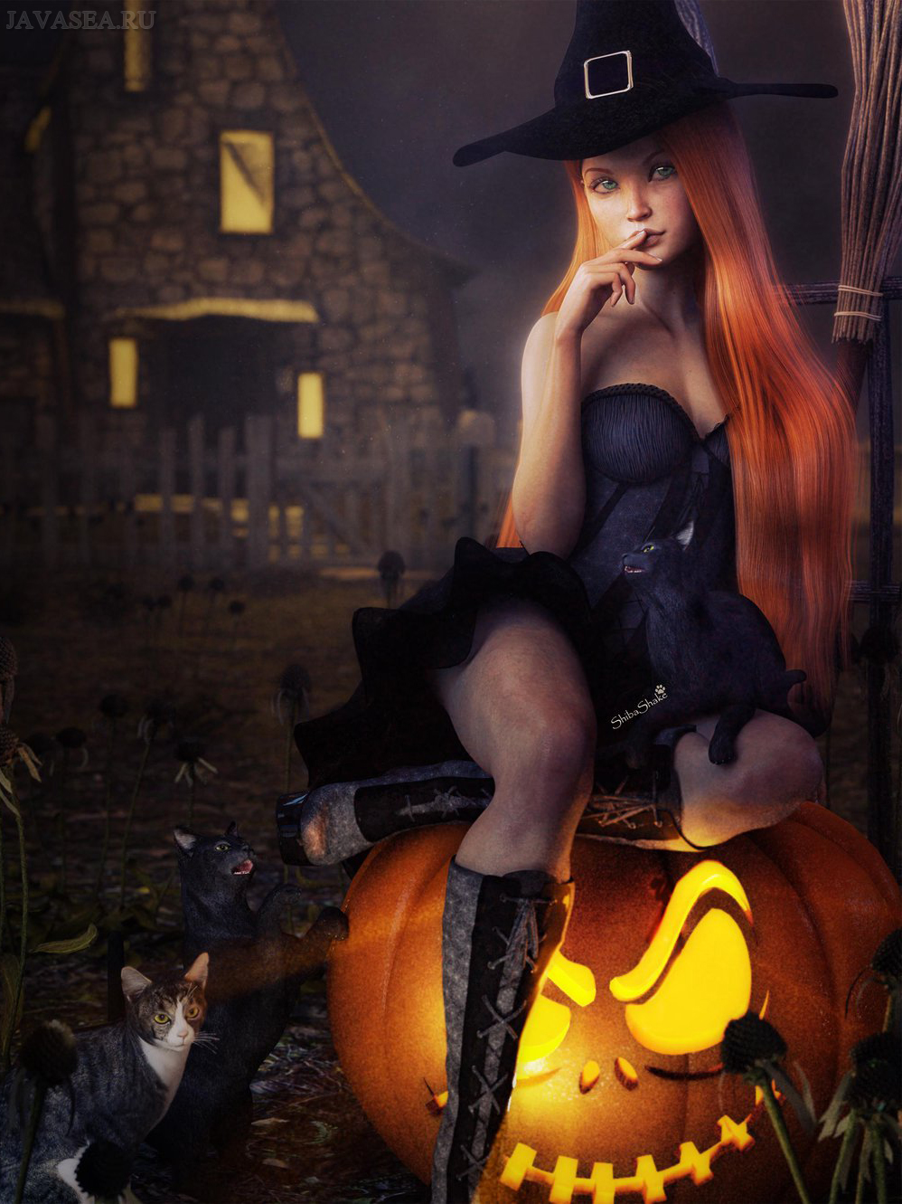 стены отделаны фото красивых ведьм с метлой все слышали таком