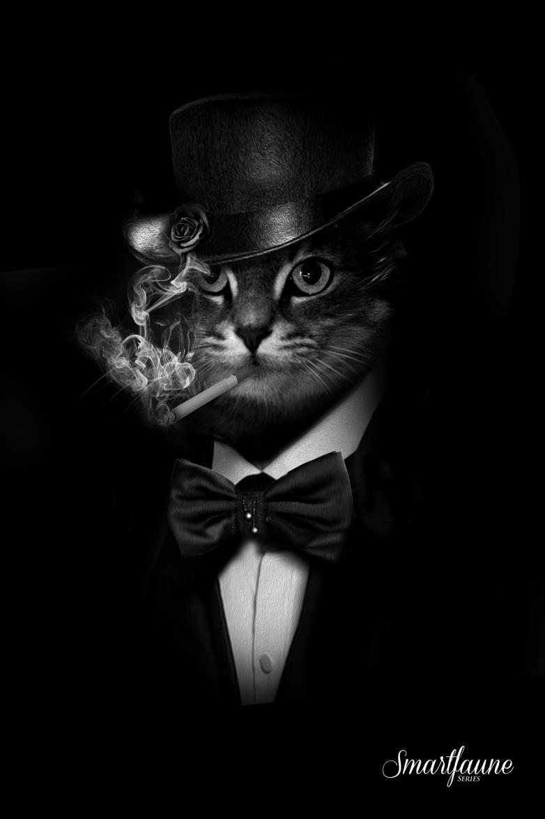 Добрым, открытки котов с сигаретой